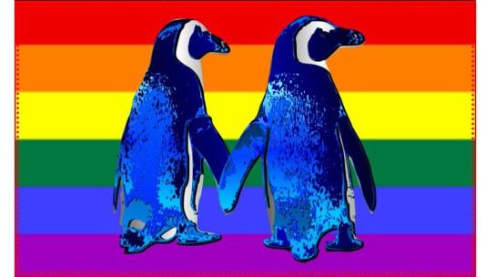 diarioe le diverso-gay-pinguinos-homosexuales.jpg