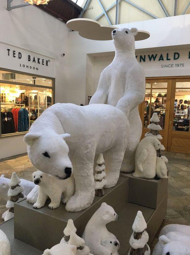 oso-polar-navidad-01-diario el diverso.jpg